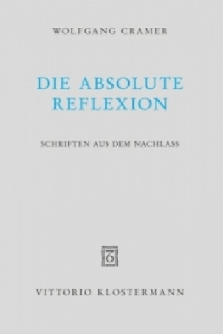 Die absolute Reflexion
