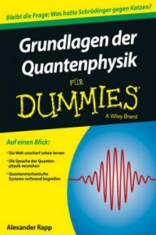 Grundlagen der Quantenphysik fur Dummies