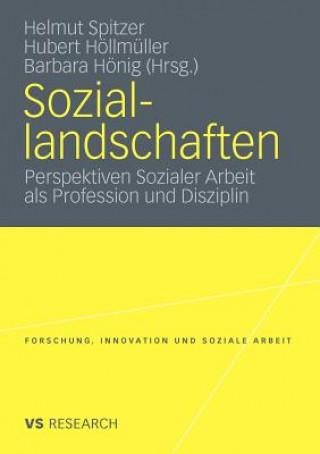 Soziallandschaften