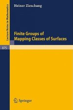 Finite Groups of Mapping Classes of Surfaces