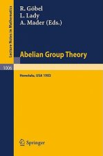 Abelian Group Theory