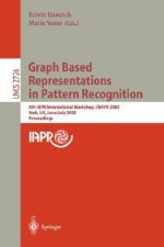 Graph Based Representations in Pattern Recognition