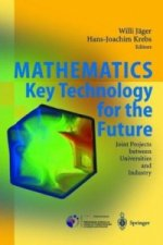 Mathematics - Key Technology for the Future