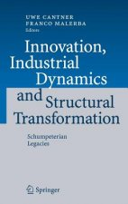 Innovation, Industrial Dynamics and Structural Transformation