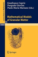 Mathematical Models of Granular Matter