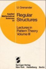 Lectures in Pattern Theory. Vol.3