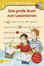 Das große Buch zum Lesenlernen