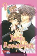 Junjo Romantica. Bd.1