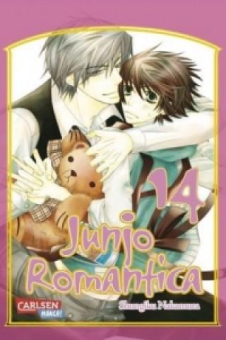 Junjo Romantica. Bd.14