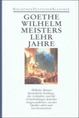 Wilhelm Meisters theatralische Sendung. Wilhelm Meisters Lehrjahre. Unterhaltungen deutscher Ausgewanderten
