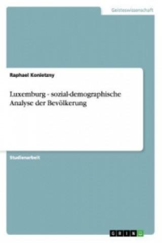 Luxemburg - sozial-demographische Analyse der Bevölkerung