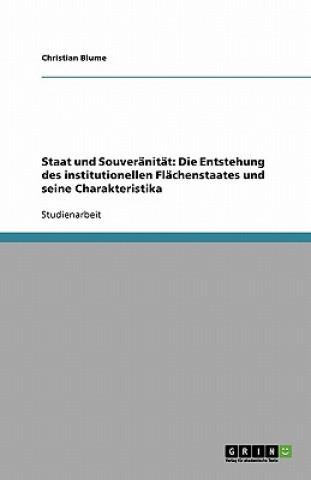 Staat und Souveränität: Die Entstehung des institutionellen Flächenstaates und seine Charakteristika
