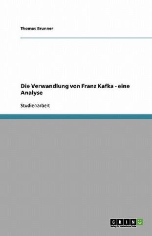 Verwandlung von Franz Kafka - eine Analyse