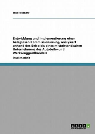 Entwicklung Und Implementierung Einer Beleglosen Kommissionierung, Analysiert Anhand Des Beispiels Eines Mittelst ndischen Unternehmens Des Autoteile-