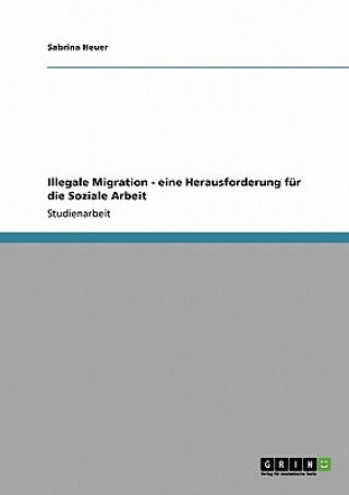 Illegale Migration - eine Herausforderung fur die Soziale Arbeit
