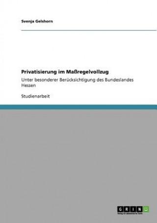Privatisierung im Massregelvollzug