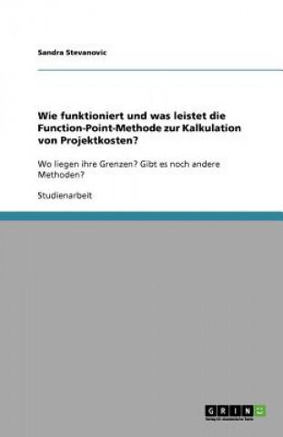 Wie funktioniert und was leistet die Function-Point-Methode zur Kalkulation von Projektkosten?