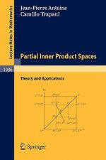 Partial Inner Product Spaces