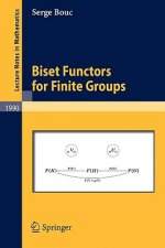 Biset Functors for Finite Groups