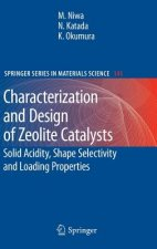 Characterization and Design of Zeolite Catalysts