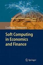 Soft Computing in Economics and Finance