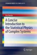 A Concise Introduction to the Statistical Physics of Complex Systems
