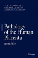 Pathology of the Human Placenta