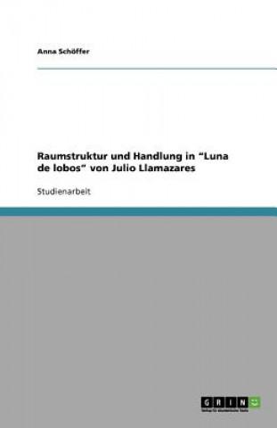 Raumstruktur und Handlung in Luna de lobos von Julio Llamazares