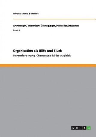 Organisation als Hilfe und Fluch