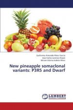 New pineapple somaclonal variants: P3R5 and Dwarf