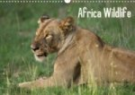 Africa Wildlife (Posterbuch, DIN A4 quer)