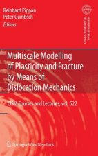 Multiscale Modelling of Plasticity and Fracture by Means of Dislocation Mechanics