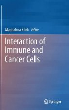 Interaction of Immune and Cancer Cells