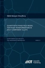 Quantitative phase-field model for phase transformations in multi-component alloys