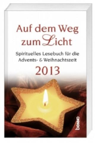 Auf dem Weg zum Licht 2013