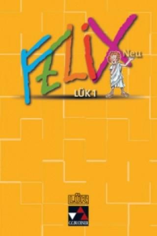 Felix Neu LÜK 1