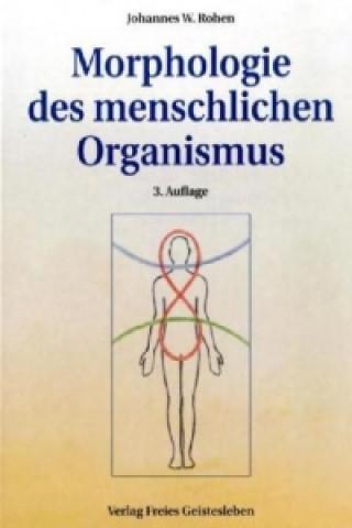 Morphologie des menschlichen Organismus