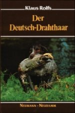 Der Deutsch-Drahthaar