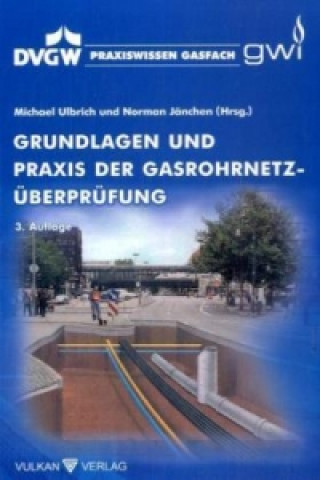Grundlagen und Praxis der Gasrohrnetz-Überprüfung