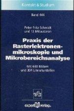 Praxis der Rasterelektronenmikroskopie und Mikrobereichsanalyse, m. CD-ROM