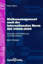 Risikomanagement nach der internationalen Norm ISO 31000:2009