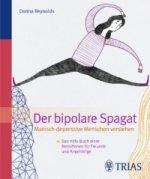 Der Bipolare Spagat: Manisch-depressive Menschen verstehen