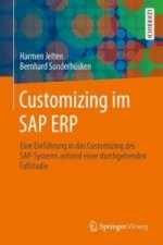 Customizing im SAP ERP