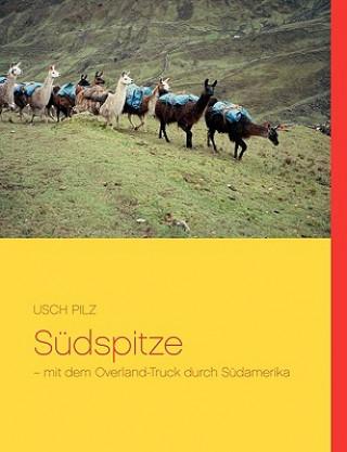 Sudspitze