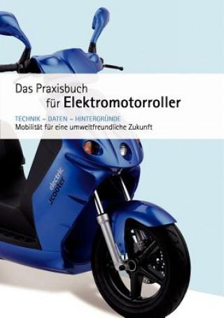 Praxishandbuch fur Elektromotorroller