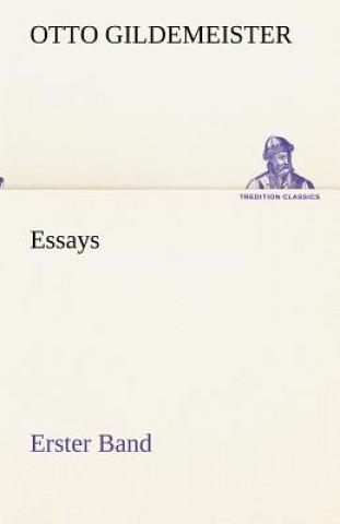Essays - Erster Band