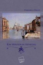 Ein Winter in Venedig