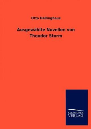 Ausgew Hlte Novellen Von Theodor Storm