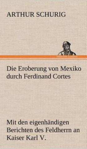 Eroberung Von Mexiko Durch Ferdinand Cortes