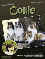 Unser Traumhund: Collie